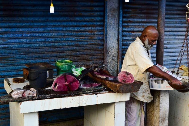Homem que vende peixes de atum crus no mercado fotografia de stock