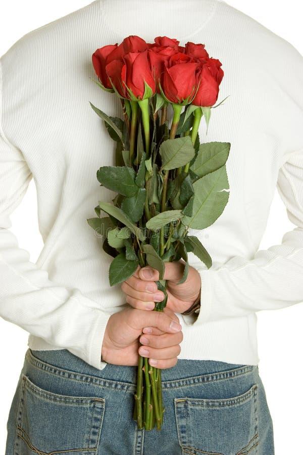 Homem romântico das rosas fotos de stock royalty free