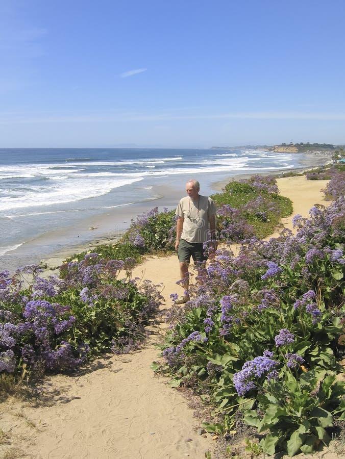 Homem sênior ativo que anda ao longo do trajeto litoral foto de stock
