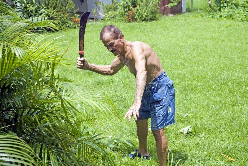 Homem sênior com machete fotografia de stock
