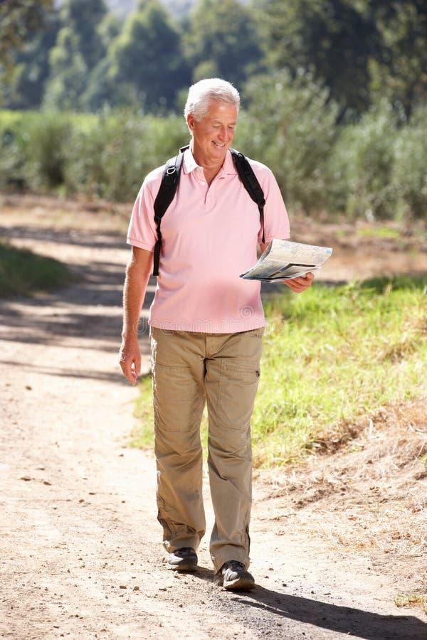 Homem sênior no mapa da leitura da caminhada do país imagem de stock royalty free