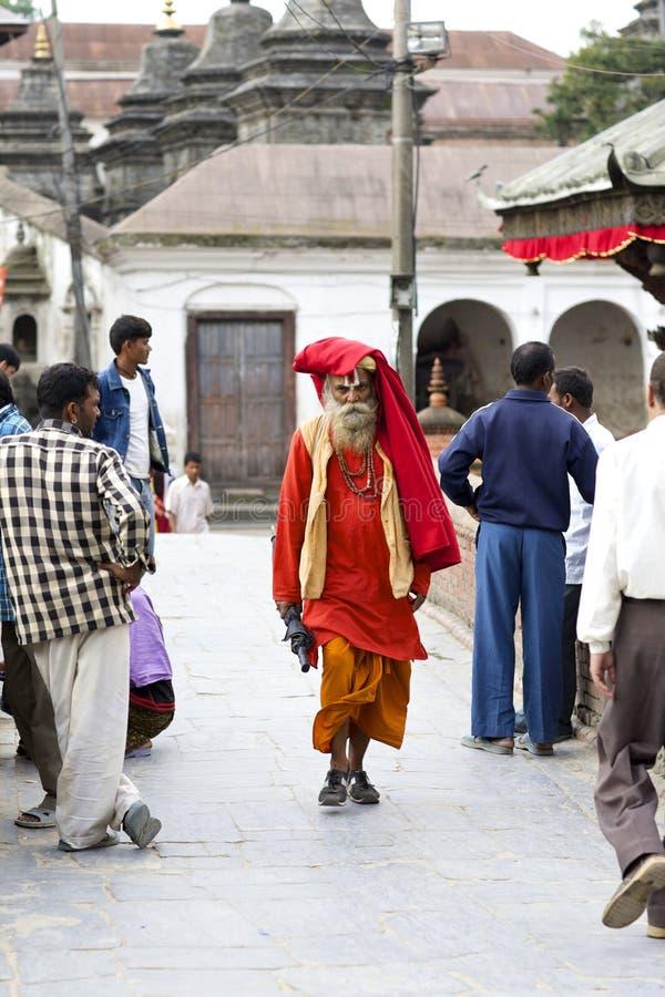Homem santamente de Sadhu imagem de stock royalty free