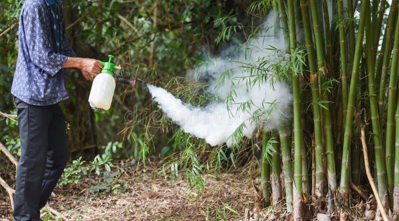 Homem segurando neblina para eliminar mosquito para prevenir a propagação da dengue e do vírus zika na floresta de bambu - spray  imagens de stock