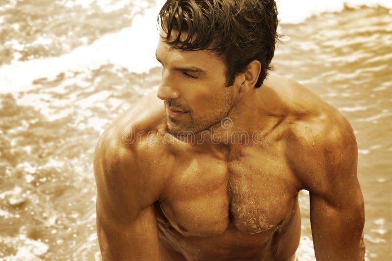 Homem 'sexy' bonito fotos de stock royalty free