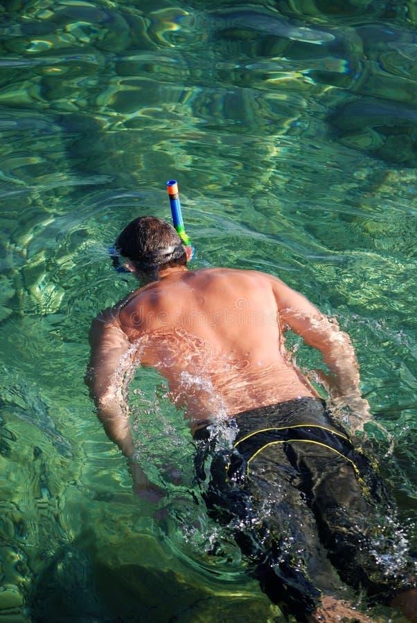Homem Snorkeling imagem de stock royalty free