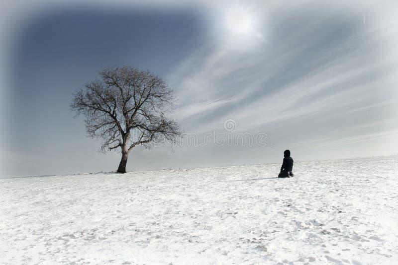 Homem solitário e árvore só fotografia de stock