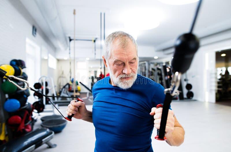 Homem superior apto no gym que dá certo com pesos foto de stock