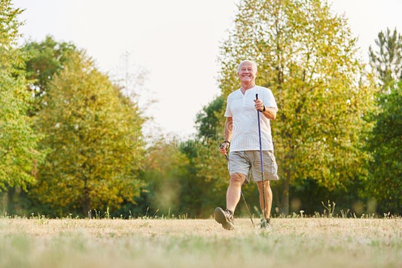 Homem superior ativo durante a caminhada nórdica heatlhy imagem de stock royalty free
