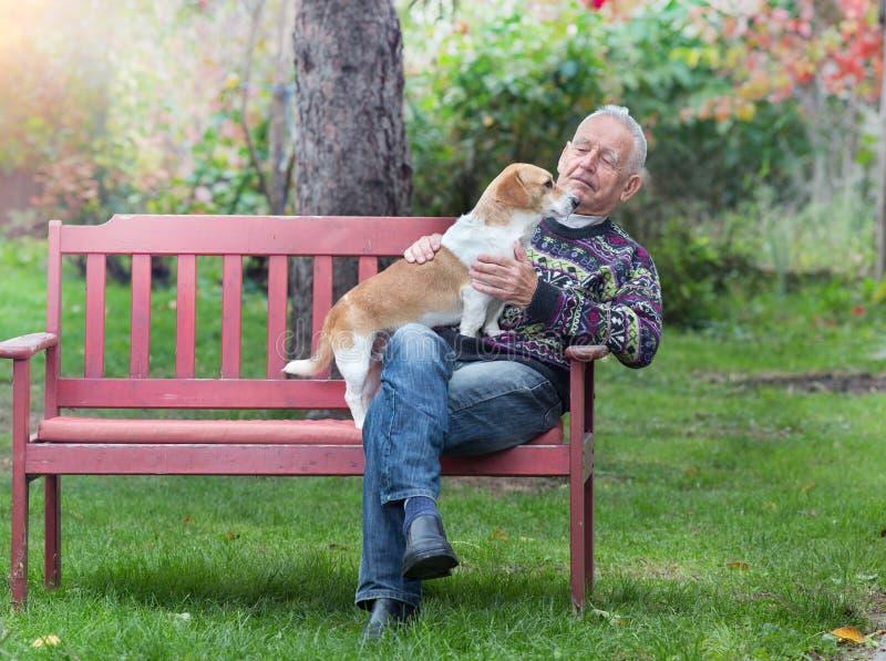 Homem superior com cão foto de stock royalty free