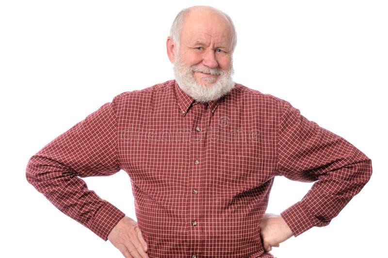 Homem superior de Cheerfull isolado no branco imagem de stock