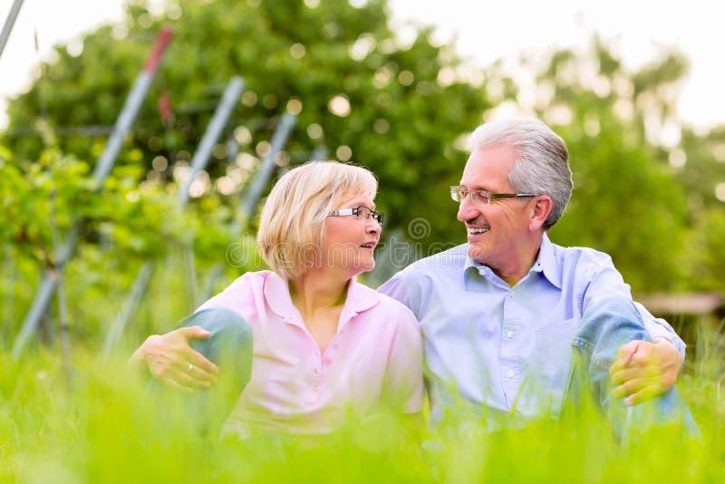 Homem superior e mulher felizes no vinhedo fotografia de stock