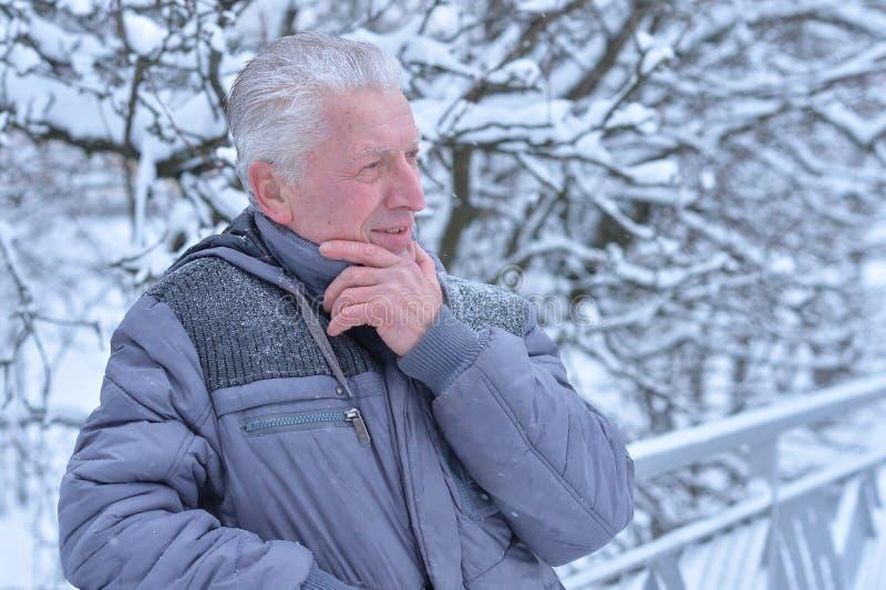 Homem superior no inverno nevado imagens de stock