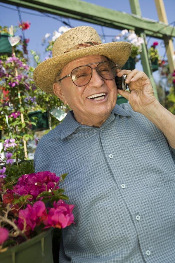 Homem superior que está no berçário da planta usando o telemóvel fotografia de stock royalty free
