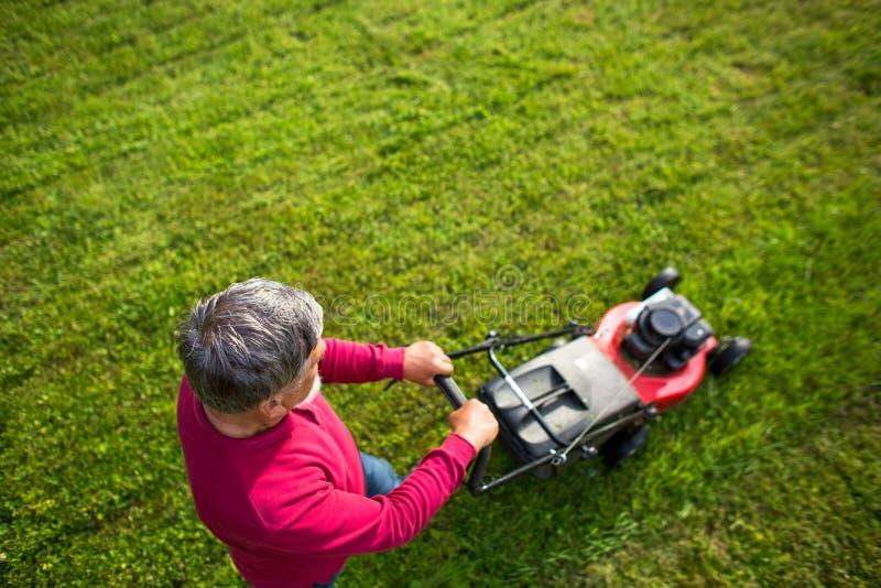 Homem superior que sega seu jardim fotos de stock