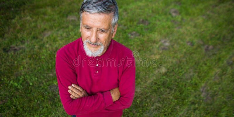 Homem superior que sega seu jardim fotografia de stock