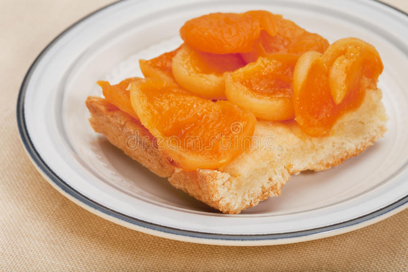Download Homemade apricot pie stock image. Image of piece, fruit - 16974197