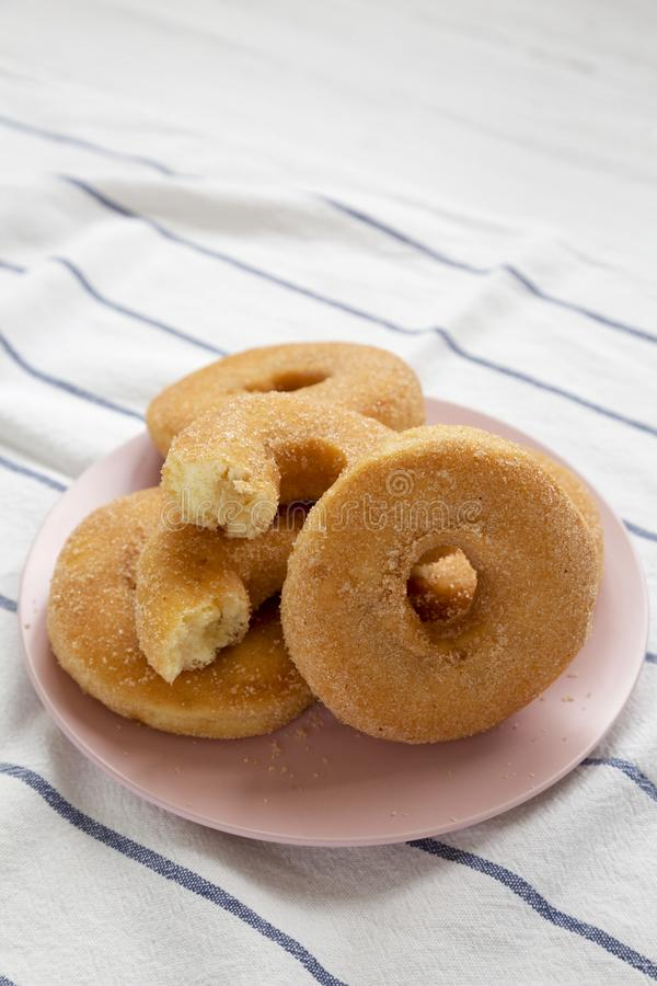 Homemade autumn apple-cinnamon donuts on a pink plate, low angle view. Closeup.  stock photography
