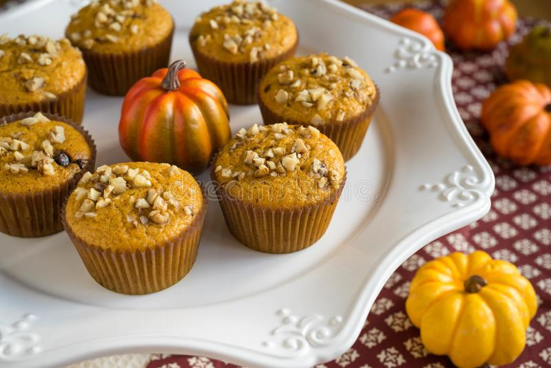 Homemade Autumn Pumpkin Muffins stock photo