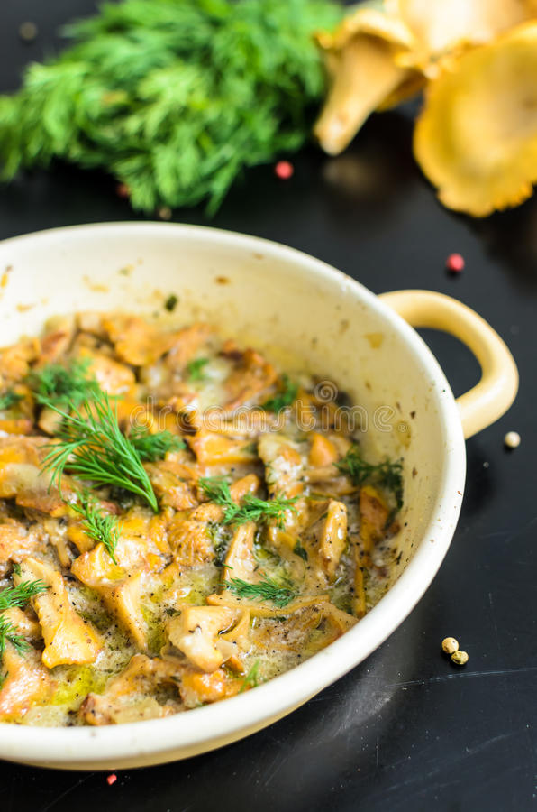 Homemade baked chanterelle mushrooms in frying pan isolated stock photography