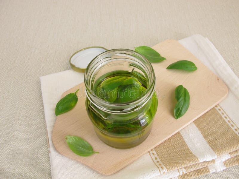 Homemade basil oil royalty free stock image