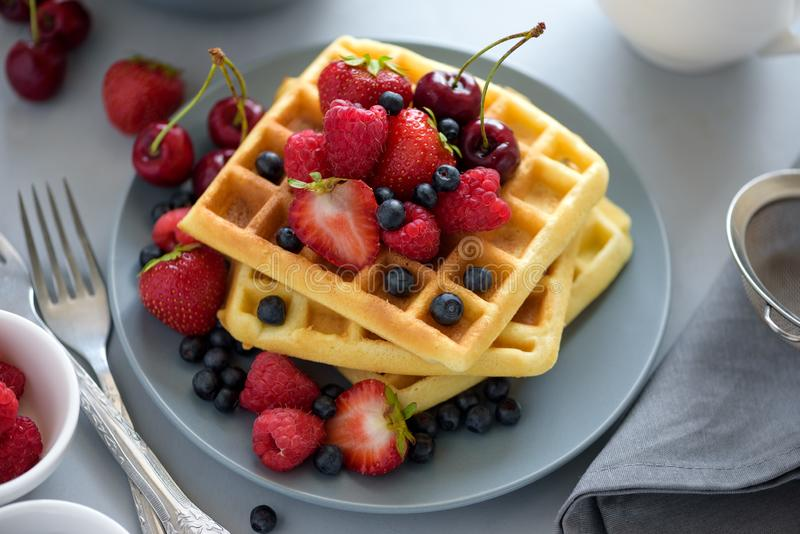 Homemade belgian waffles with berries on gray table. Healthy breakfast concept stock photos