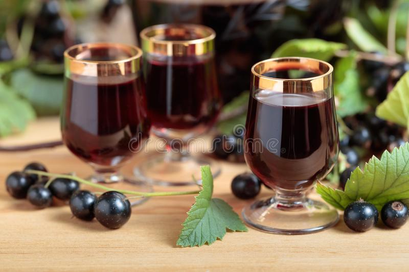 Homemade black currant liqueur and fresh berries . royalty free stock image