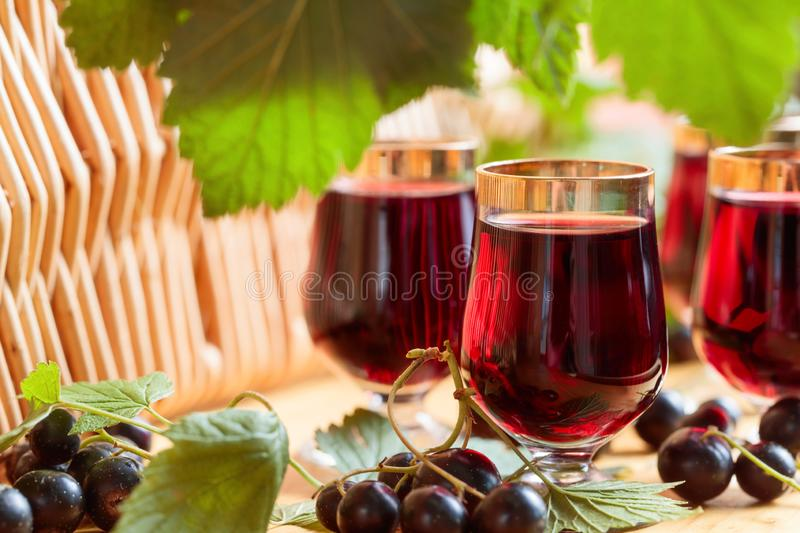 Homemade black currant liqueur and fresh berries. royalty free stock image
