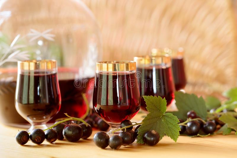 Homemade black currant liqueur and fresh berries. stock image
