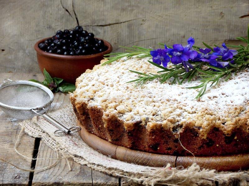 Homemade blueberries crumble pie stock image