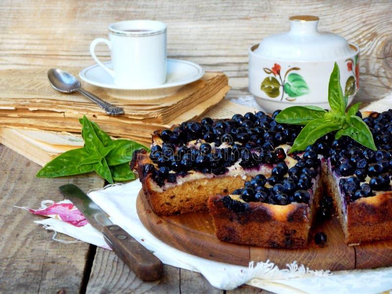 Homemade blueberries pie royalty free stock photo