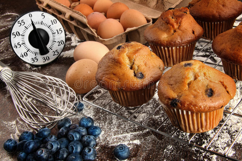 Download Homemade blueberry muffins stock image. Image of healthy - 27193661