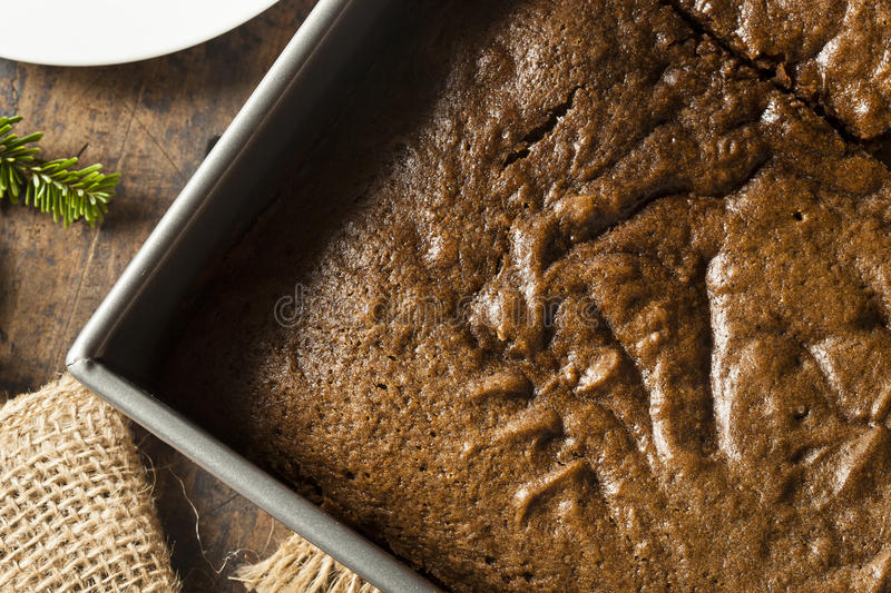 Homemade Brown Gingerbread Cake. With Whipped Cream royalty free stock photography