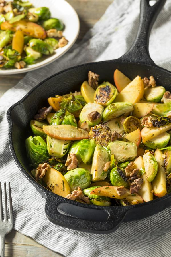 Homemade Brussel Sprout and Apple Salad. For the Fall royalty free stock photo