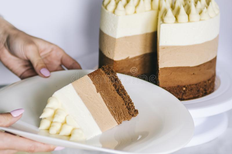 Cake Three Chocolate stock image