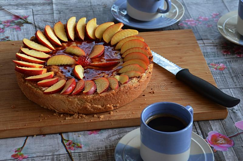 Homemade cheesecake with chocolate topping, decorated with slices of nectarine shaped as a circle with flower shapein the middle. royalty free stock image