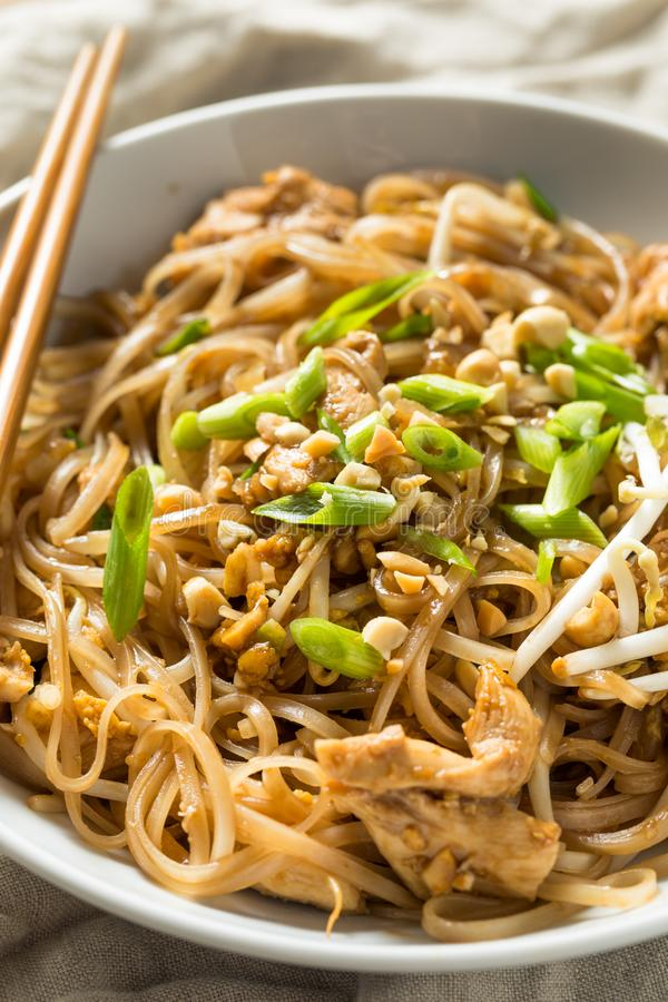 Homemade Chicken Pad Thai. With Bean Sprouts and Peanuts stock image