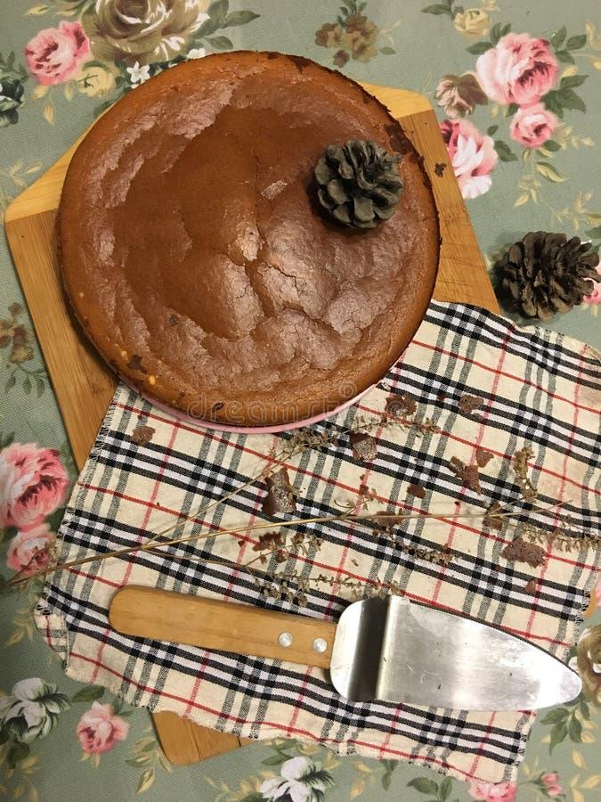 homemade chocolate cheesecake stock photos