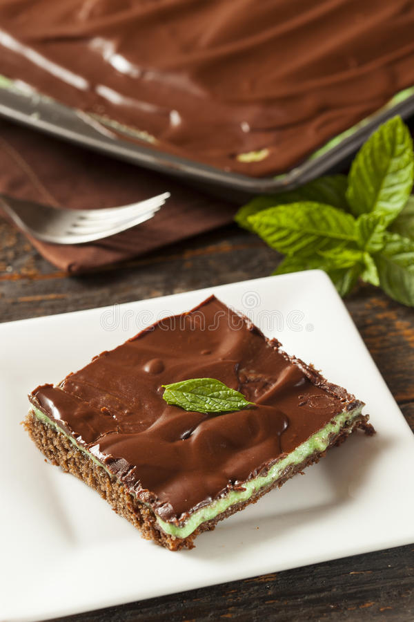 Homemade Chocolate and Mint Brownie stock image