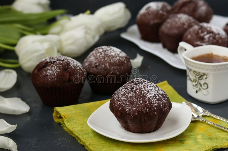 Chocolate muffins with cherry, covered with powder sugar located on a dark background stock photo