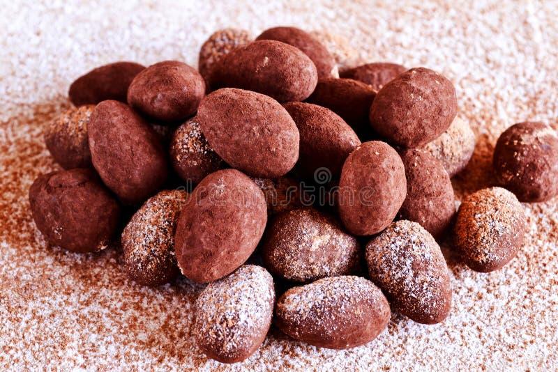 Homemade chocolate truffle royalty free stock photo