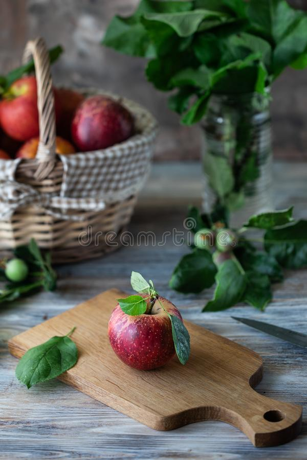 Homemade compote of summer apples on a wooden table by the window. Basket of apples. Wild flowers of the chamomile in the jar stock photography