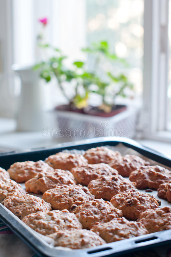 Download Homemade Cookies On A Baking Tray Stock Photo - Image: 26966452