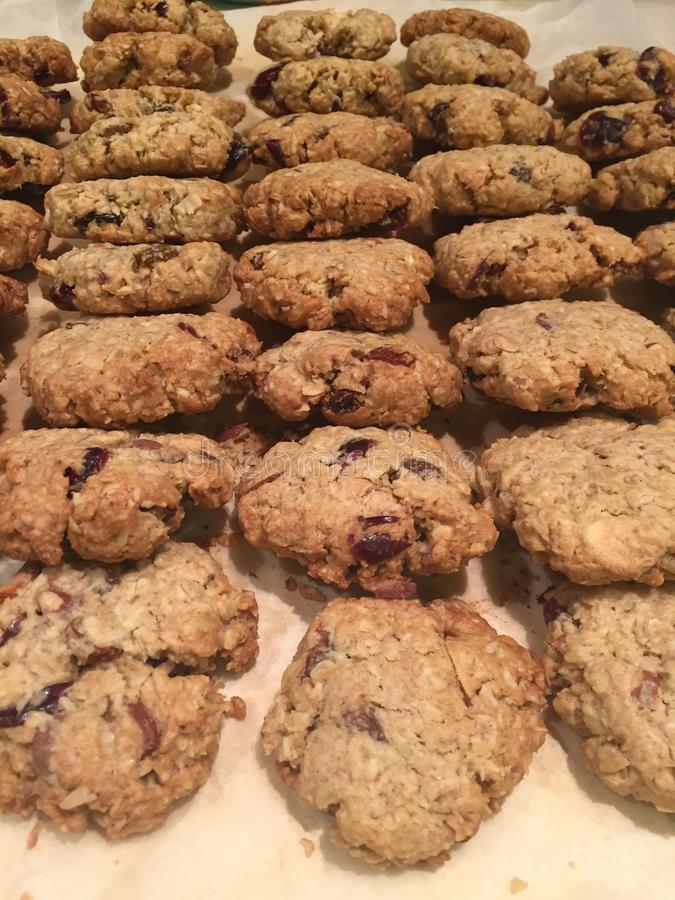 Homemade cookies oat raisin cranberry cookies royalty free stock images