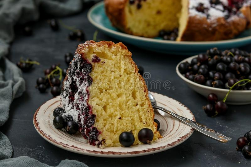 Homemade cottage pie with black currant with a cut piece of cake located on a dark background, horizontal orientation. Close up royalty free stock photography