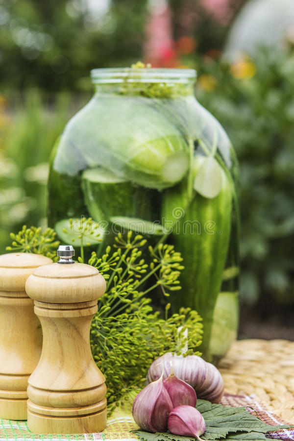 Homemade cucumber preserved in glass jar stock photography