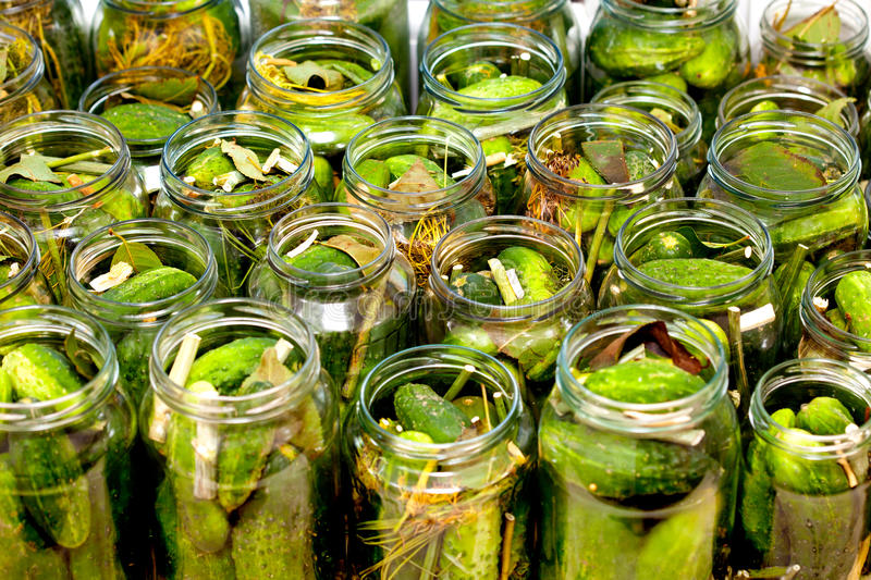 Homemade cucumbers in jars. Fresh green cucumbers in jars ready to be flooded with vinegar royalty free stock photos