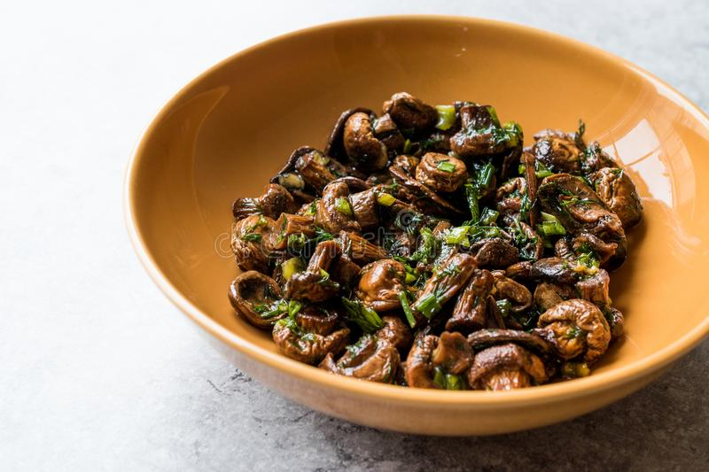 Homemade Cultivated Mushroom Salad with Dill and Green Onions. royalty free stock photos