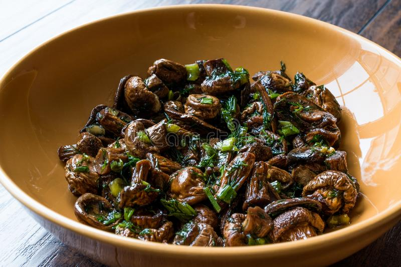 Homemade Cultivated Mushroom Salad with Dill and Green Onions. royalty free stock images