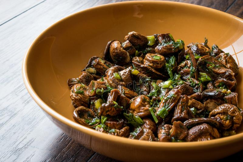 Homemade Cultivated Mushroom Salad with Dill and Green Onions. stock image