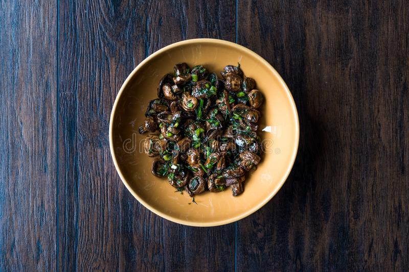 Homemade Cultivated Mushroom Salad with Dill and Green Onions. stock photos